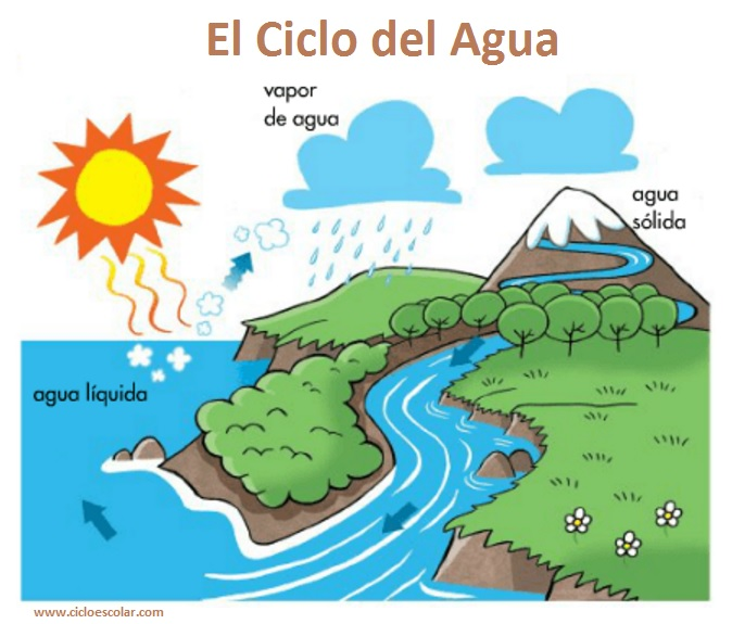 LE CYCLE DE L'EAU  2º A
